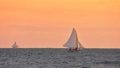 Vamos chamar o vento (Andr Felipe Carvalho) Tags: vento peroba icapu cear jangada pesca pescador nikon d7200 18300 alvorada sol nascente goldenhour