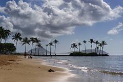 Beach silhouette (marko.erman) Tags: hawaii oahu island pacific beach sun palms sand contrejour landscape pov travel honolulu kahala sony ocean sea contour shape silhouette