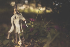 Hitchin A Ride (3rd-Rate Photography) Tags: thedarkcrystal jen landstrider gelfling thra jimhenson funko reaction figure toy toyphotography canon 50mm 5dmarkiii nikon lenswhacking freelens jacksonville florida 3rdratephotography earlware flower