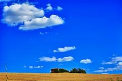 Toscana (giannipiras555) Tags: casale toscana cielo azzurro alberi