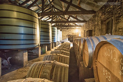 Paradise, heaven and 17. mai at the same time :-) (Normann Photography) Tags: 1992 2012 brickwall montifaud paradise tcs afewofabigbunch aging barrels cognac gold groupofbarrels heaven quality storage tnner valuable warehouse wow 17mai may17th