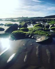 Embleton Beach (Fiona in Eden) Tags: northumberland northsea holiday england emblazon beach sand rockpools sunlight