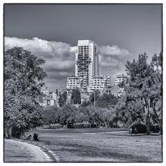 Sacher Park, Jerusalem (kitchener.lord) Tags: israel jerusalem impressions photowalk 2016 fujinonxf1855 blackwhite