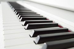 Note Perfect  (NVOXVII) Tags: piano instrument music white black keys arty minimal simplistic nikon indoor stilllife lines dof depthoffield composition macro closeup