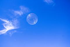 Bubble (Maya Tregerman) Tags: bubble sky morning cloud fly air exposure blue clouds skies light bubbles soap landscape
