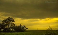 Magical Nature (Shamim omi) Tags: road light cloud tree canon nikon coolpix landescape s3000 sx40 pabna ishwardi ishurdi