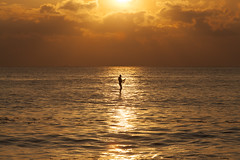 Man walking on water (Christian Wilt) Tags: ocean sunset man france water brittany walk bretagne paddling fr finistere christianwilt