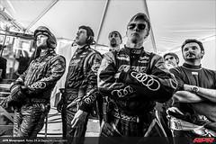 APR-Motorsport-Rolex-24-2013-193