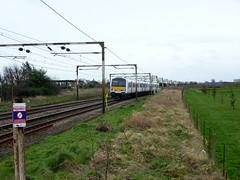foot crossing (Essex Explorer) Tags: train footpath essex rochford p1100758