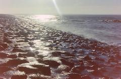 dutch winter (51) (bertknot) Tags: winter dutchwinter dewinter winterinholland winterinthenetherlands hollandsewinter winterinnederlanddutchwinter