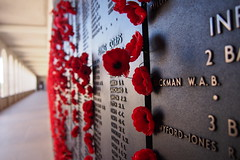 Wall of honour at the Australian War Memorial (Adriano_of_Adelaide) Tags: memorial australia fallen poppies soldiers canberra names remembrance warmemorial act australianwarmemorial rollofhonour wallofhonour