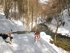 Vintgar gorge (duncan) Tags: winter slovenia bled gorge vintgargorge vintgar 2013 triglavski zaprto