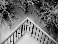 triangulation (Rino Alessandrini) Tags: trees winter plants white snow black cold vertical alberi garden triangle soft geometry balcony branches meadow neve railing flakes oblique piante inverno prato bianco freddo nero rami giardino verticale balcone geometria fiocchi ringhiera soffice obliquo triangolo