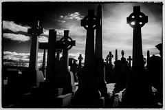 Necropolis (Feldore) Tags: white black cemetery graveyard scotland cross sinister glasgow sony victorian crosses spooky celtic mchugh necropolis rx100 feldore