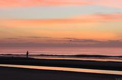 Good things come to those who bait (Shannon Rose O'Shea) Tags: sky beach clouds sunrise fishing fisherman southcarolina hiltonheadisland colignybeach canoneosrebelt2i goodthingscometothosewhobait shannonroseoshea giveamanafishandhecaneatforadaybutteachamanhowtofishandhellbedeadofmercurypoisoninginsideofthreeyears explore03132013