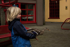 Duck whisperer (williecb750) Tags: vancouver island duck child granville