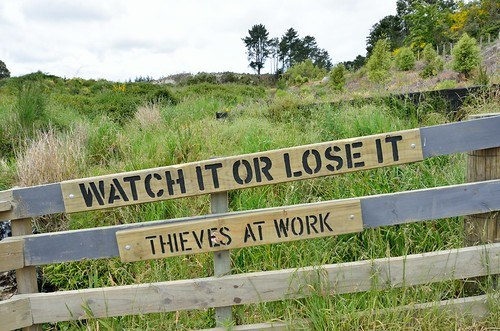 Watch it or lose it -  thieves at work.