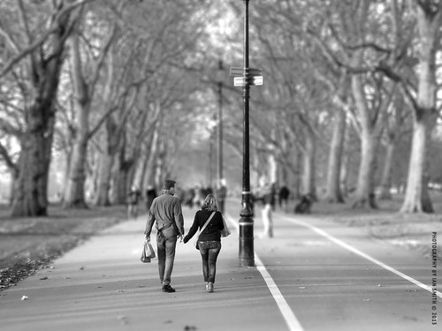 Hyde Park Lovers