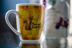 Well .... (BGDL) Tags: kitchen coffee cat reflections table florida mug lakewoodranch nikond7000 ourdailychallenge beginswithc bgdl nikkor50mm118g elementsorganizer11