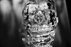 "Day 58: ""Kingdom of the..."" (espressoDOM) Tags: vegas bw photography skull blackwhite treasureisland photoaday 365 espressodom crystalskull ilovebw iloveblackwhite indianajonesandthekingdomofthecrystalskull 365daysofphotos 3652013"