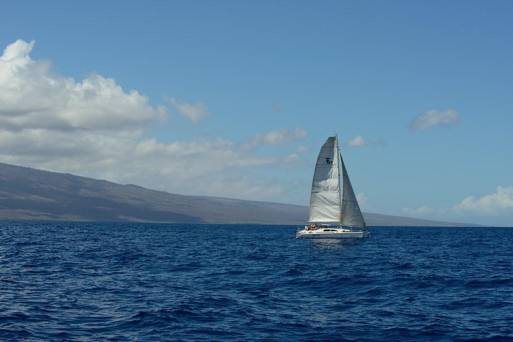 61e9ed94959 Sailing Away (SandyK29) Tags  ocean blue sky sun sunlight white nature  water clouds