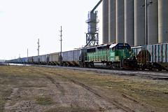IORY 5005 east at Cruger 3-27-13 (BSTPWRAIL) Tags: railroad ohio burlington america train grain rail railway bn io toledo western local wyoming northern gw extra peoria genesee tpw railamerica gp50 indaiana iory