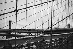 Lined Bridges (Ani_Ro) Tags: nordamerika northamerica amerika america unitedstatesofamerica unitedstates usa us vereinigtestaatenvonamerika newyorkcity newyork nyc ny brooklynbridge zufusdurchbrooklyn manhattanbridge streben lines bar brace trger stahl steel schwarz schwarzweis weis black blackwhite blanc blancnoir monochrome monochrom festbrennweite sony sonyalpha7 alpha7