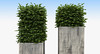 Boxwood Shrubs in Column Pots (oleg_scolt) Tags: plant modern column shrub planter pot garden topiary park bush nature foliage leaf boxwood buxus exterior 3d green set collection greenary
