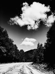 (of) clouds. (belle.fleur) Tags: lifeofclouds madeofskyandclouds nature trees clouding ontheroadtoalbany summer2016 clouds gods bea cloudsaregodsmanifestationoflove countryroadswithmightyclouds iphone alidajolie