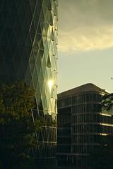 Geripptes :: Westhafen Frankfurt (tmertens0) Tags: westhafen frankfurt hessen harbour city sunset sonnenuntergang jupiter 9 silver gegenlicht backlight