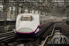 JR East / E2 Series (J54) (HAMA-ANNEX) Tags:    jp k1 smcpentaxda300mmf4edifsdm shinkansen  jr e2