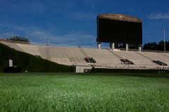 IMG_9727 (UGA College of Ag & Environmental Sciences - OCCS) Tags: grass turfgrass tiff419 419 sanfordstadium privet hedge hedges scoreboard