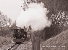Winter Rail (Outdoorjive) Tags: other autumn flikr desktop office events eastanglia places uk norfolk waog brampton england unitedkingdom gb