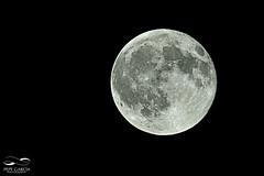 Superluna (ppgarcia72) Tags: supermoon superluna mallorca nikon nikond7000 nikon200500mm noche stars nocturna