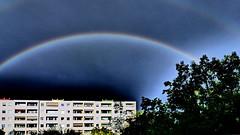 20160810 Berlin Lichtenrade Regenbogen (3.2) (j.ardin) Tags: deutschland germany allemagne alemania berlin lichtenrade regenbogen rainbow schwarzerhimmel blauerhimmel bluesky