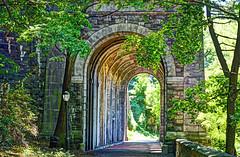 hidden NYC-2 (albyn.davis) Tags: architecture arches streetlamp streetlight light sunlight passage trees park stonework