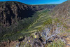 Steens - 1 (rpdphotography) Tags: steensmountains