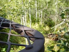 Getting Ready (finlander13) Tags: minnesota ironrange autumn fall deerhunting deercamp deerseason deerstand huntingworksforminnesota whitetaildeer whitetail woods nature outdoors