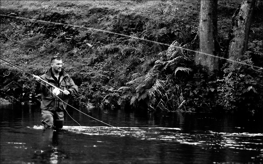The world 39 s best photos of casting and salmon flickr for Fish river tree farm