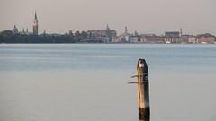 Venice lagoon at sunset - September 2016 (gianni.turris) Tags: venezia venice lidodivenezia lagoon laguna italia italy sole sun sunset tramonto canon