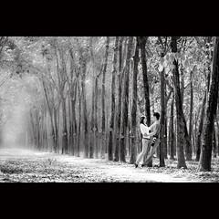 Happiness (-clicking-) Tags: lighting trees light people blackandwhite bw love monochrome landscape blackwhite perspective vietnam lover nocolors rubbertrees vietnameselandscape nhntrch