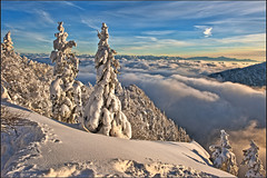Les Rochers de Tablettes and the Alpes, Canton of Neuchâtel. in 12 12 12 . No. 1637. (Izakigur) Tags: winter mountains alps liberty schweiz switzerland nc nikon europa europe flickr suisse suiza swiss feel ne jura helvetia nikkor svizzera neuchatel neuchâtel lepetitprince ch berna dieschweiz musictomyeyes 瑞士 suïssa neuenburg suizo romandie suisseromande 스위스 myswitzerland lasuisse سويسرا שווייץ cantondeneuchâtel d700 阿尔卑斯山 nikond700 nikkor2470f28 izakigur cantondeneuchatel nikon2470f28 nikon2470mmf28g cantonofneuchatel 명사 suisia laventuresuisse izakigurneuchatel mygearandme paysdeneuchâtel izakigurneuchâtel ӯҳҳоиалп izakigur2012 izakigurd700 lesrochersdetablettes