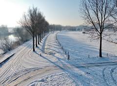 Winter - 6 (Johnny Cooman) Tags: zingem oostvlaanderen belgië bel belgia belgien belgique belgium bélgica eastflanders flandern flanders flandes flandre flemishregion flhregion landscape landschap natuur vlaanderen ベルギー sneeuw snow panasonicdmcfz200 winter schelde reflectie reflection vpu2 vpu3 vpu4 vpu5 vpu6 vpu8 vpu7 vpu9 vpu10 vpu1 aaa pwwinter day clear thegalaxy