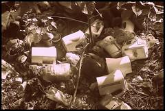 polecam dobre miejsce na czajniki... (stempel*) Tags: las bw forest poland polska kettle polen teapot czb polonia radziejowice czajnik czajniki korytw gambezia