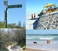 Saturday at Peregian Beach (Gillian Everett) Tags: 100113 113picturesin2013 gillianeverett pitcurecollageofyourday