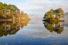 DSC_0034 Derwent Water Islands (wilkie,j ( says NO to badger cull :() Tags: light lake mountains reflections landscape island nikon scenery lakedistrict scenic mornings derwentwater nationalparks nationaltrust nationalgeographic scenicwater sceniclandscape