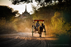 Ride horse (joeziz EK pholrojpanya) Tags: from thailand view you photos or everyone imagex seax photox cityx naturex artistx photographyx nightx nikonx travelx landscapex gettyx twilightx imagesx cityscapex skylinex fototrovex picksx