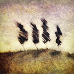 Hillbillies (Flick Vlooi) Tags: trees painterly abstract art landscape colorful hill treescape textured hillbillies artscape photomix greenscene memoriesbook arttex treetexturemagazine