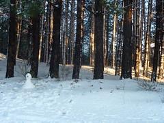 Hello Snowman :) (ChocoHal) Tags: road winter light sun white snow mountains tree leaves foglie alberi forest twilight snowman little many branches uomo neve di sui bianca piccolo heavy inverno rami degli foresta pupazzo leggera pesante