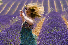 Lavender love (Claudio Cantonetti) Tags: light motion france girl field rural europa europe day emotion violet campo lavander movimento provence francia luce ragazza provenza lavanda giorno rurale emozione levender